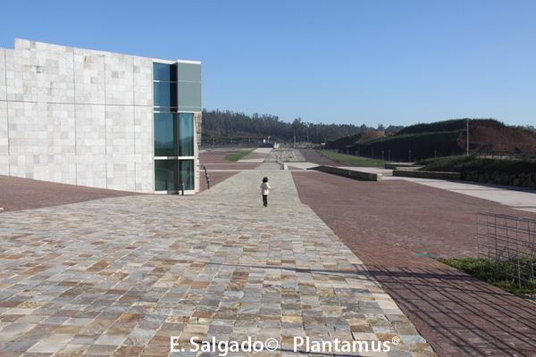 ciudad de la cultura santiago de compostela