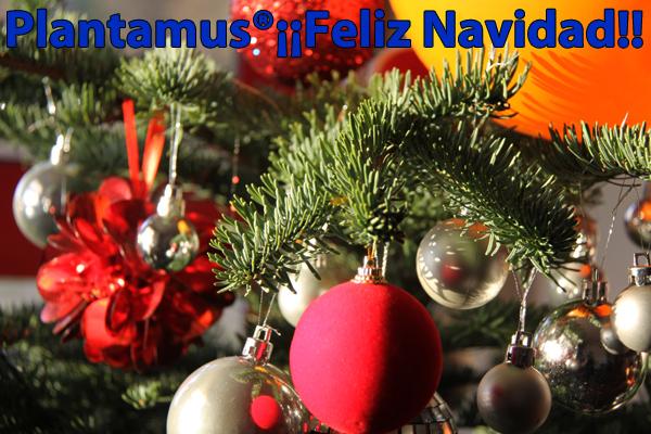 arbol-de-navidad-plantamus