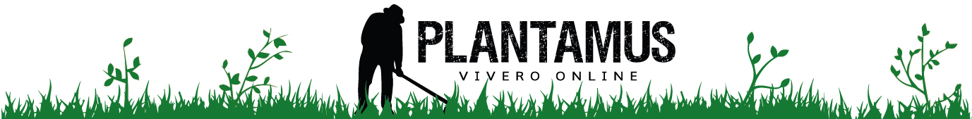Plantamus