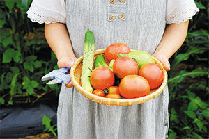 Cultivos compatibles al plantar tomates