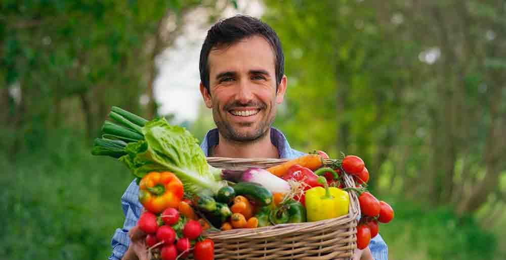 ¿por qué necesitamos nutrientes para sobrevivir?