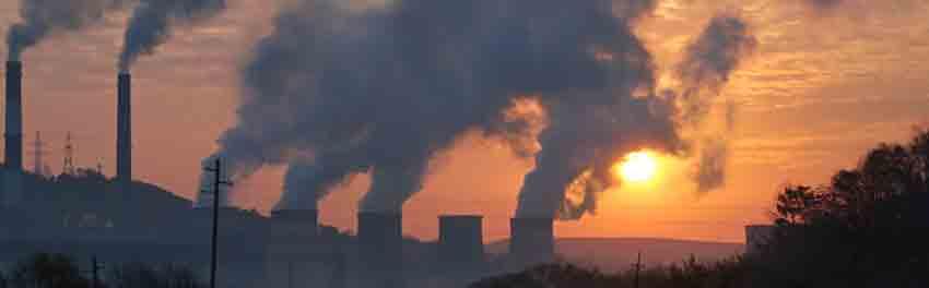 arboles contra contaminacion